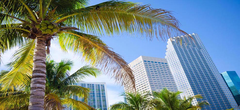 Find great condo deals in FL